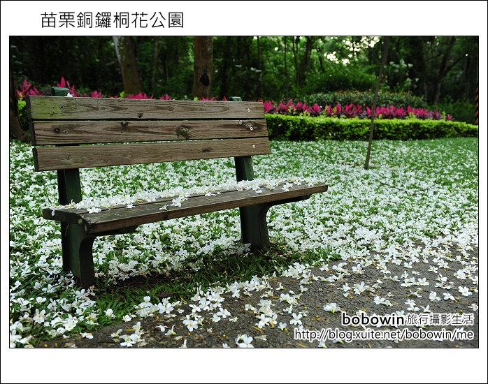 2012.04.29 苗栗桐花公園花況:DSC_1745.JPG