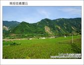 2011.08.14 南投信義新鄉村:DSC_0764.JPG