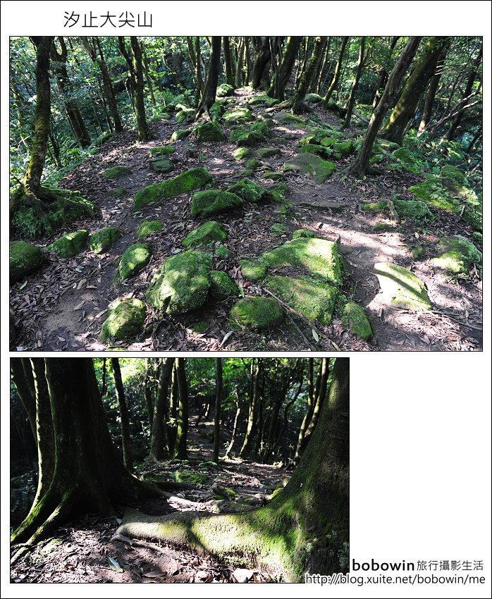 2012.05.06 汐止大尖山:DSC_2593.JPG