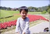 台北內湖大溝溪公園:DSC_2238.JPG