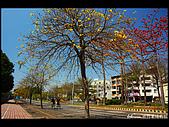 20080213_台南東豐路:DSC_3954.jpg
