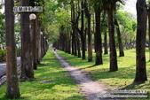 2014.08.09 宜蘭運動公園:DSC_4731.JPG