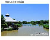 桃園八德埤塘生態公園:DSC_2046.JPG
