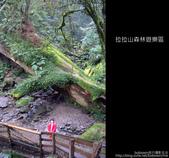 [ 北橫 ] 桃園復興鄉拉拉山森林遊樂區:DSCF7863.JPG