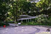 竹崎親水公園天空步道:DSC_9879.JPG