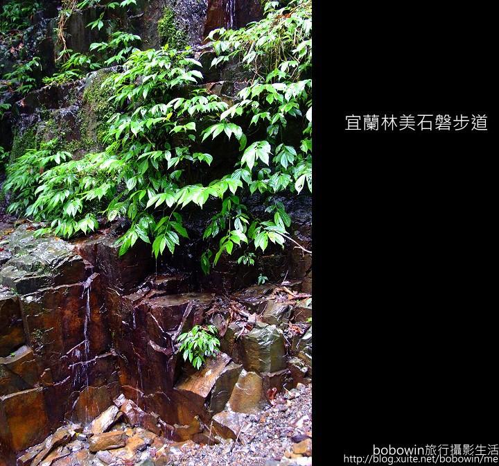 2009.06.13 林美石磐步道:DSCF5477.JPG