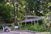 竹崎親水公園天空步道:DSC_9882.JPG