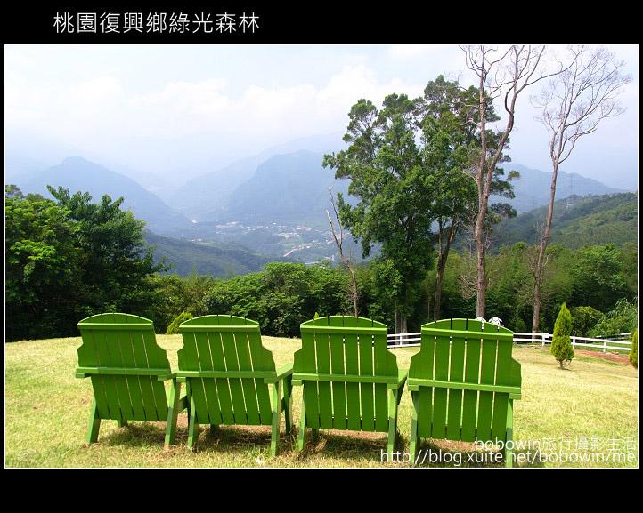 2009.08.15 綠光森林:DSCF6599.JPG