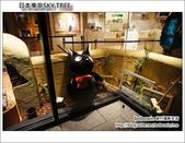 日本東京SKYTREE:DSC06923.JPG