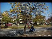 20080213_台南東豐路:DSC_3975.jpg