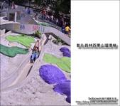 02_彰化百果山溜滑梯:DSC_3893.JPG
