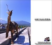 台東三仙台比西里岸找幾米:DSC_1699.JPG