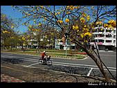 20080213_台南東豐路:DSC_3983.jpg