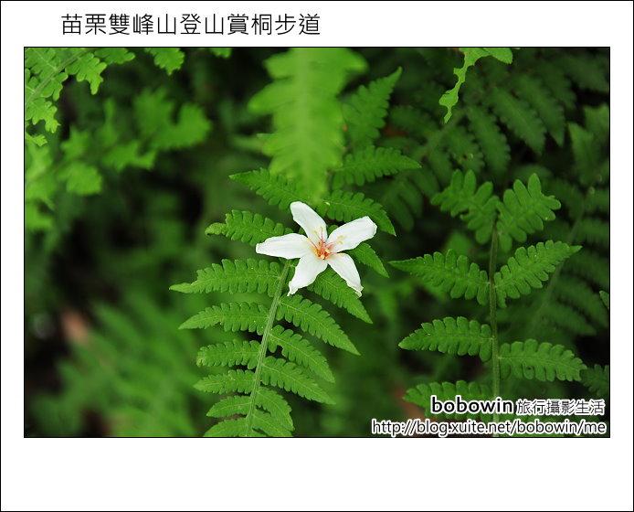 2012.04.29 苗栗雙峰山登山步道:DSC_2030.JPG