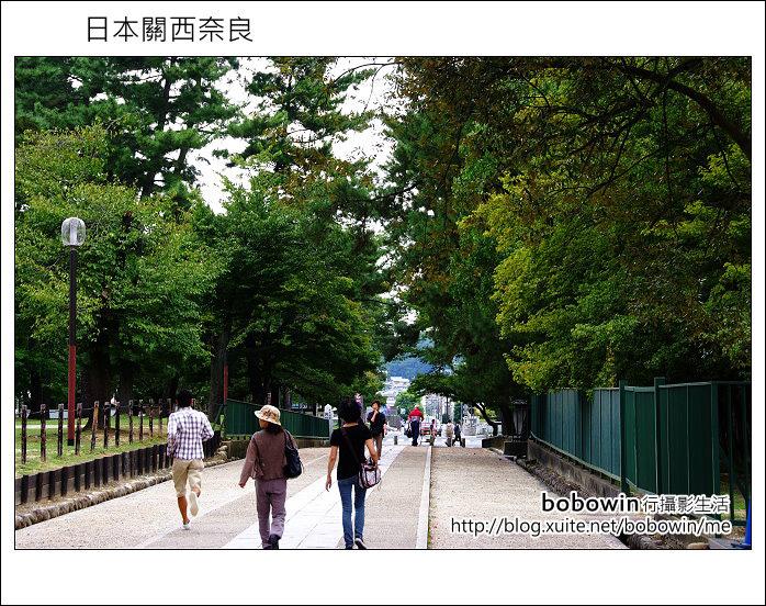 日本關西京都之旅Day5 part1 東福寺 奈良公園 春日大社:DSCF9503.JPG