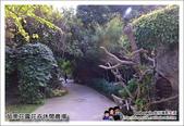 苗栗花露花卉農場:DSC_7057.JPG
