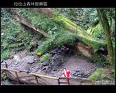 [ 北橫 ] 桃園復興鄉拉拉山森林遊樂區:DSCF7864.JPG