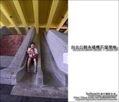 台北公館永福橋下溜滑梯:DSC_1588.JPG