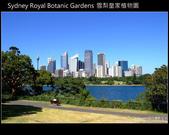 [ 澳洲 ] 雪梨皇家植物園 Sydney Royal Botanic Gardens:DSCF5107.JPG