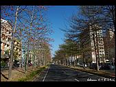20080213_台南東豐路:DSC_4025.jpg