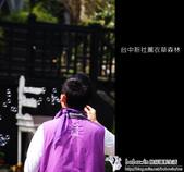 [ 台中 ] 新社薰衣草森林--薰衣草節:DSCF6526.JPG