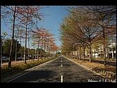 20080213_台南東豐路:DSC_2909.jpg