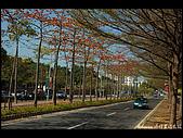20080213_台南東豐路:DSC_2904.jpg