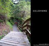 [ 北橫 ] 桃園復興鄉拉拉山森林遊樂區:DSCF7867.JPG