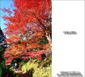 京都:天龍寺02.jpg