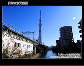 Day5 part3 日本東京天空樹:DSC_1486.JPG