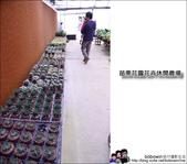 苗栗花露花卉農場:DSC_7341.JPG