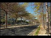 20080213_台南東豐路:DSC_2851.jpg