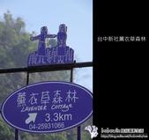 [ 台中 ] 新社薰衣草森林--薰衣草節:DSCF6421.JPG