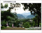 2012.04.29 苗栗桐花公園花況:DSC_1733.JPG