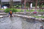 清水地熱公園:DSC_6735.JPG