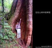 [ 北橫 ] 桃園復興鄉拉拉山森林遊樂區:DSCF7886.JPG
