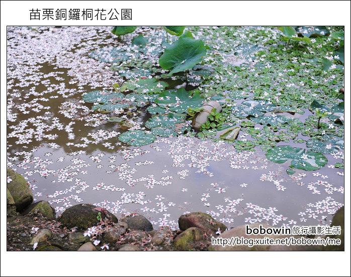 2012.04.29 苗栗桐花公園花況:DSC_1787.JPG