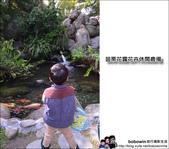 苗栗花露花卉農場:DSC_7053.JPG