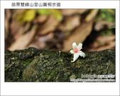2012.04.29 苗栗雙峰山登山步道:DSC_2032.JPG