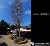 [ 台中 ] 新社薰衣草森林--薰衣草節:DSCF6530.JPG