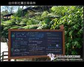 [ 台中 ] 新社薰衣草森林--薰衣草節:DSCF6424.JPG