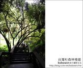2011.05.14台灣杉森林棧道 文史館 天主堂:DSC_8304.JPG