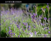 [ 台中 ] 新社薰衣草森林--薰衣草節:DSCF6477.JPG