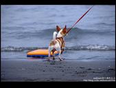 [ 遊記 ] 宜蘭烏石港衝浪 :DSCF6027.JPG