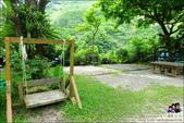 新竹尖石油羅溪森林:DSC07722.JPG