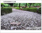 2012.04.29 苗栗桐花公園花況:DSC_1780.JPG