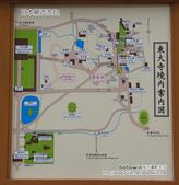 [ 日本京都奈良 ] Day5 part2 奈良東大寺:DSCF9723.JPG