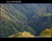 [ 北橫 ] 桃園復興鄉拉拉山森林遊樂區:DSCF7998.JPG