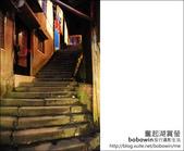 2011.05.14 奮起湖賞螢火蟲:DSC_8158.JPG