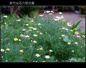 [ 景觀餐廳 ] 新竹尖石六號花園:DSCF0521.JPG